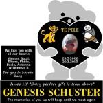 Schuster Genesis